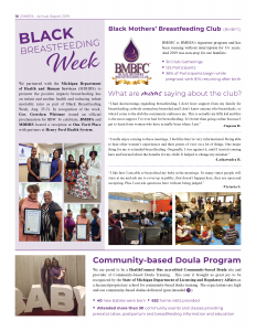 https://blackmothersbreastfeeding.org/wp-content/uploads/2020/06/2019-Annual-Report_10-232x300.png